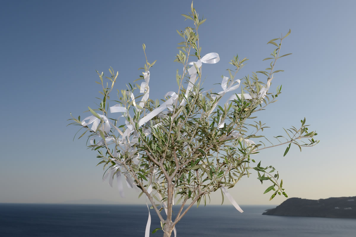 Flowers Decoration Mykonos Wedding Package 13